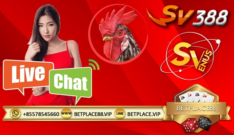 SV388 Livechat